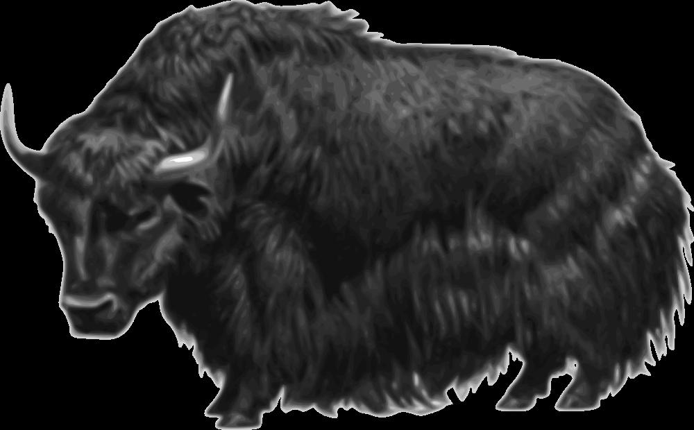 Yak clipart musk ox. Onlinelabels clip art no