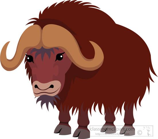 Bison clipart muskox. Mammal musk ox classroom