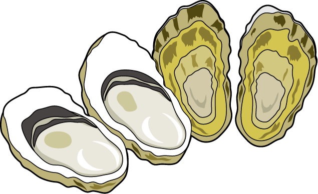 Oyster clipart. Panda free images clip