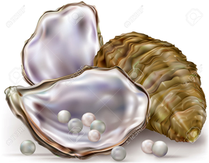 Oyster clipart pink pearls. Pearl free images at