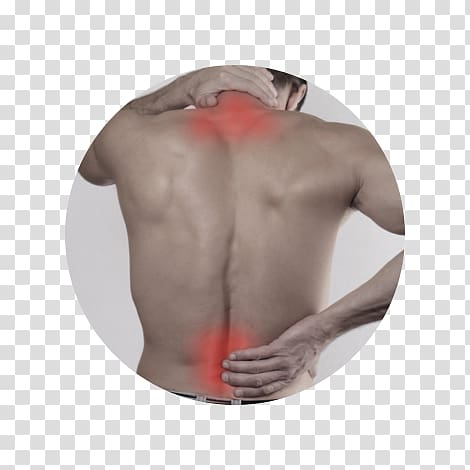 Physical chiropractic pain others. Therapy clipart neck massage