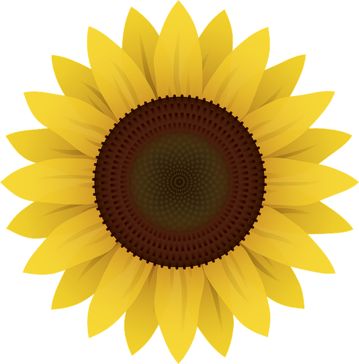 Painting clipart sunflower van gogh. Vector images of sunflowers