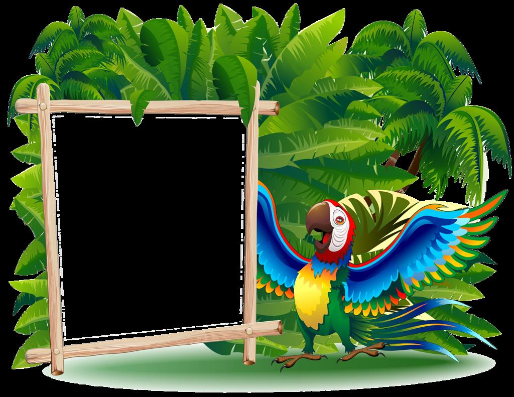 Image du blog zezete. Parrot clipart border
