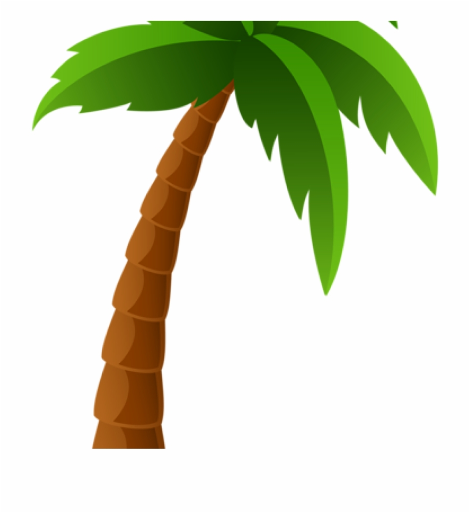 Palm clipart. Tree png image graphics