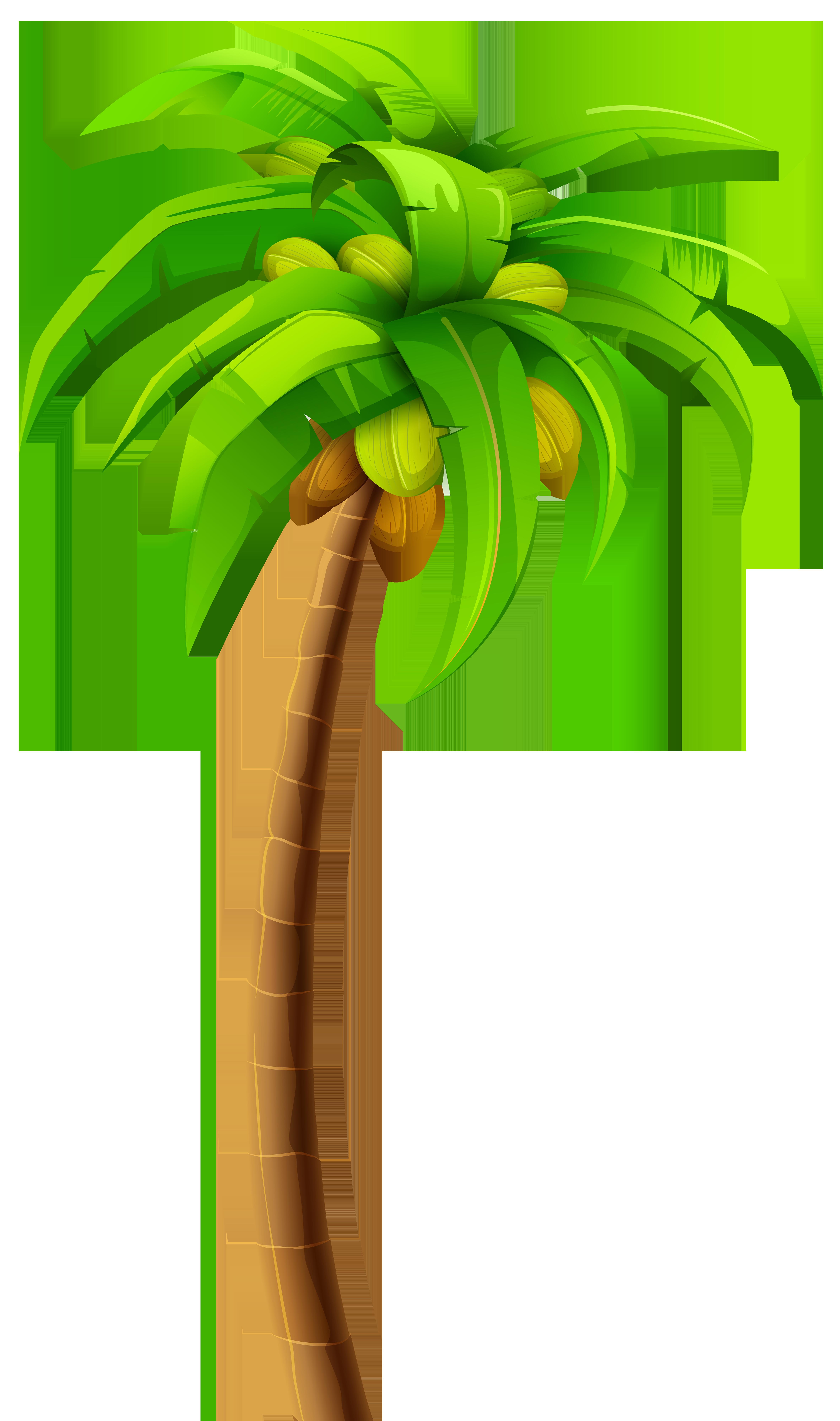 Png clip art best. Palm clipart