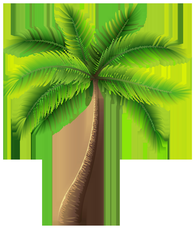 Jazz clipart clip art. Palm tree png best