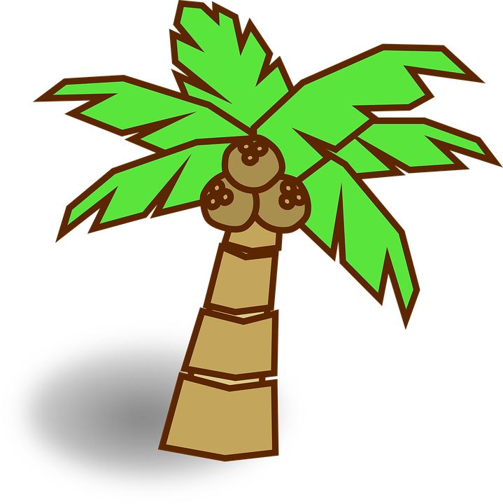 Some lessons learned from. Palm clipart 8 bit