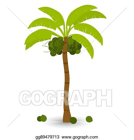 Palm clipart bunch. Vector stock coconut tree