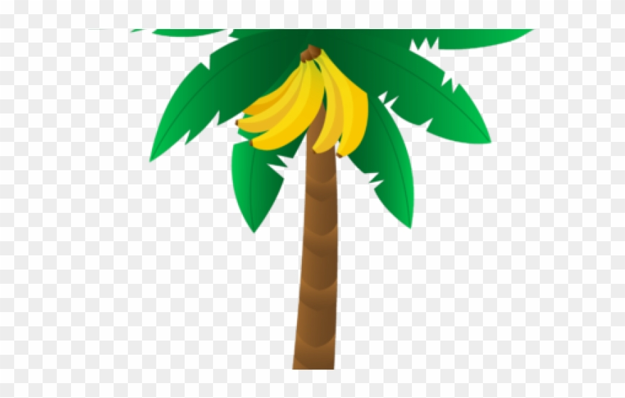 Tree transparent banana . Palm clipart bunch