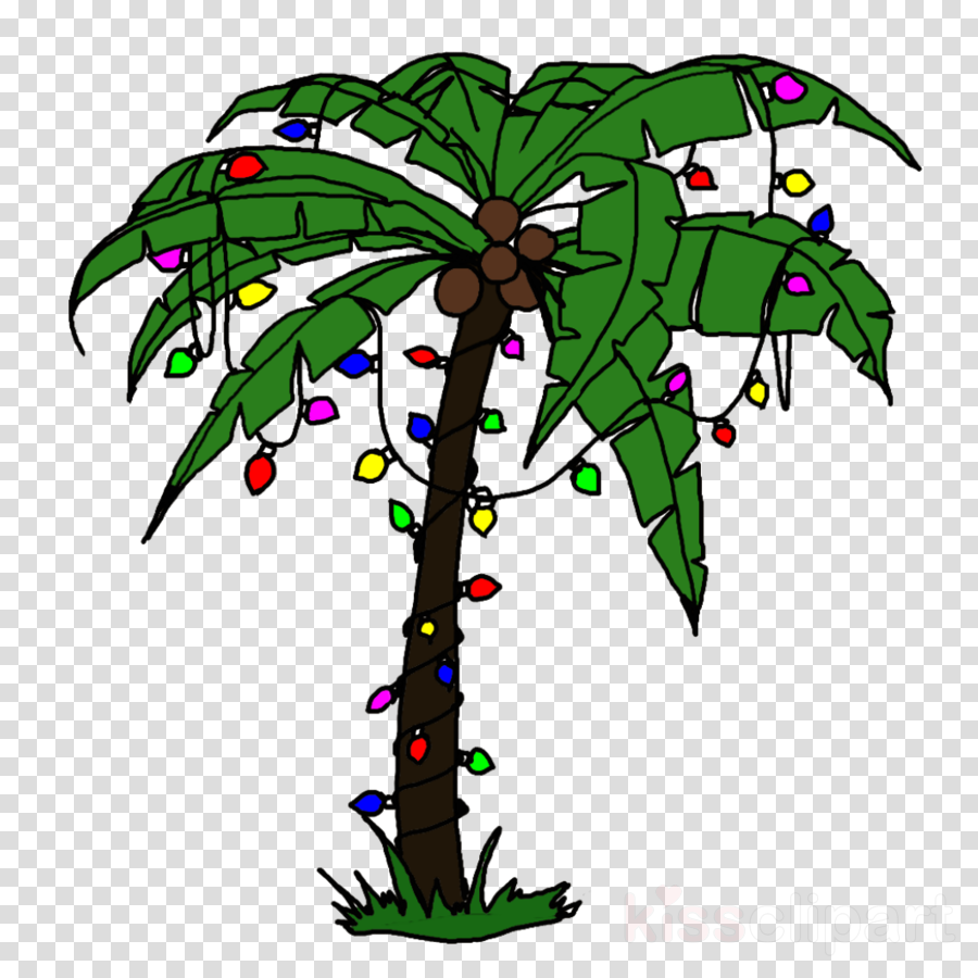 Tree leaf holidays transparent. Palm clipart day