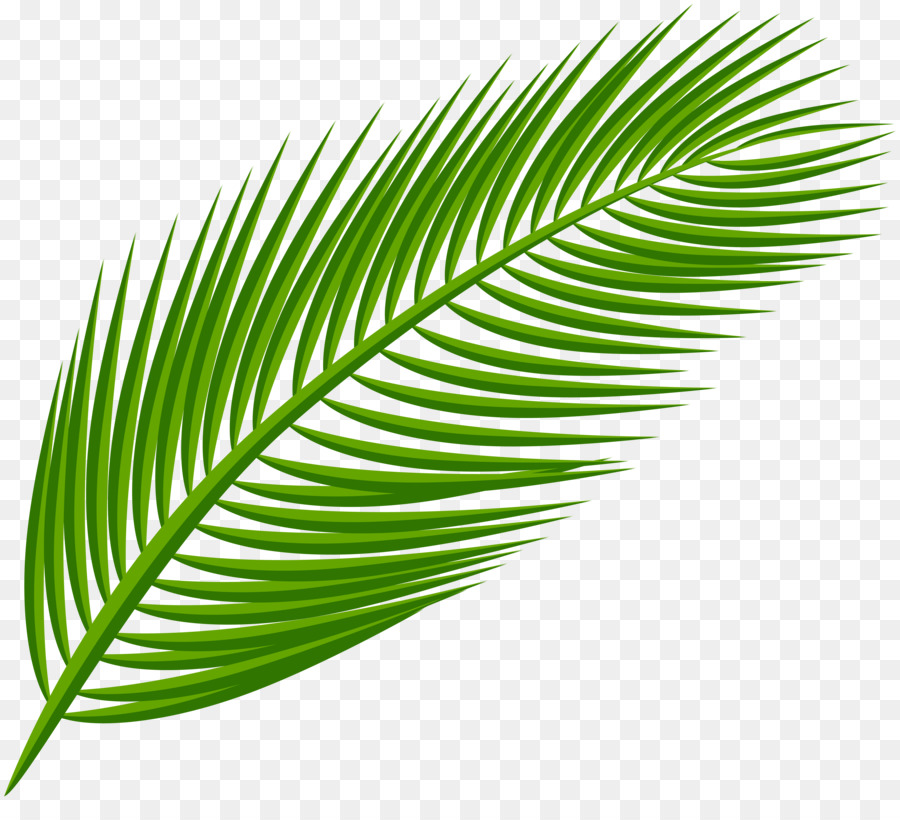 Station . Palm clipart green branch