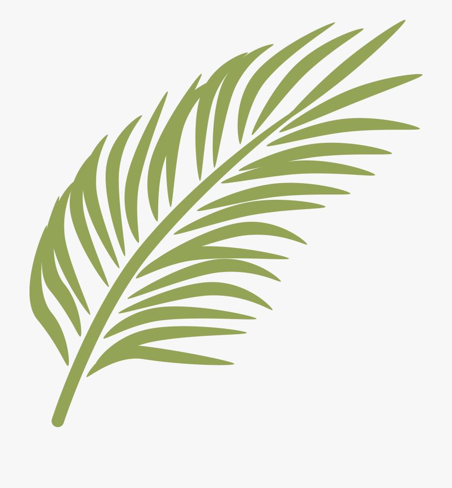 Arecaceae clip art banana. Palm clipart green branch