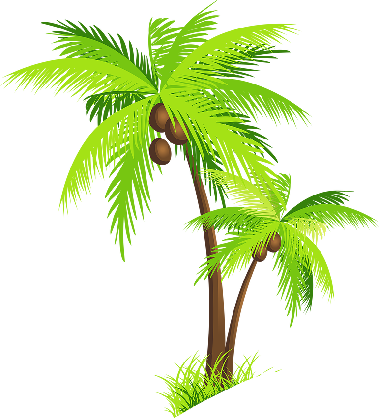 Palm clipart oasis. Villa disney palmtreecoconutclipartaiqeltpng