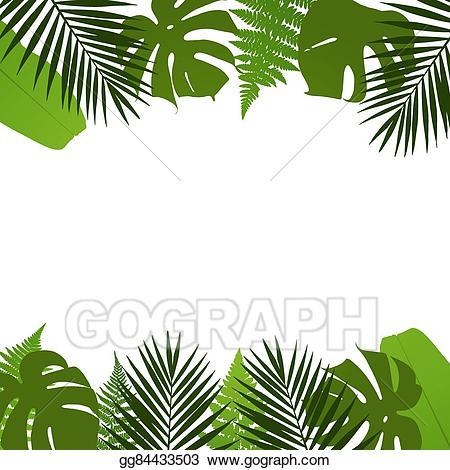 Vector art tropical leaves. Palm clipart pal