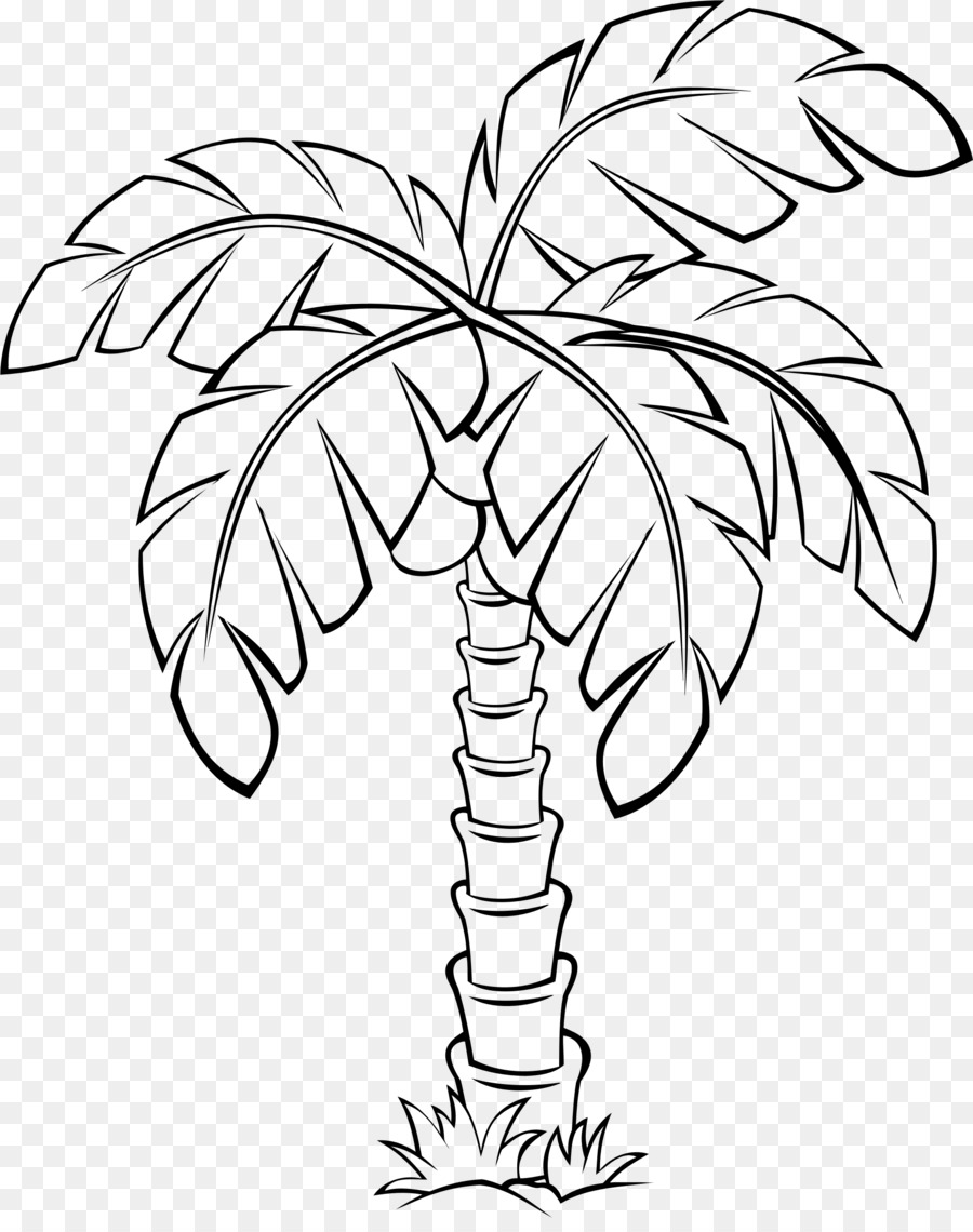 Black and white flower. Palm clipart pal