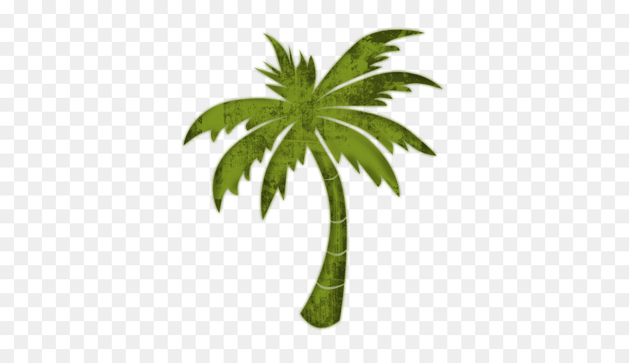 Palm clipart pal. Date tree leaf coconut