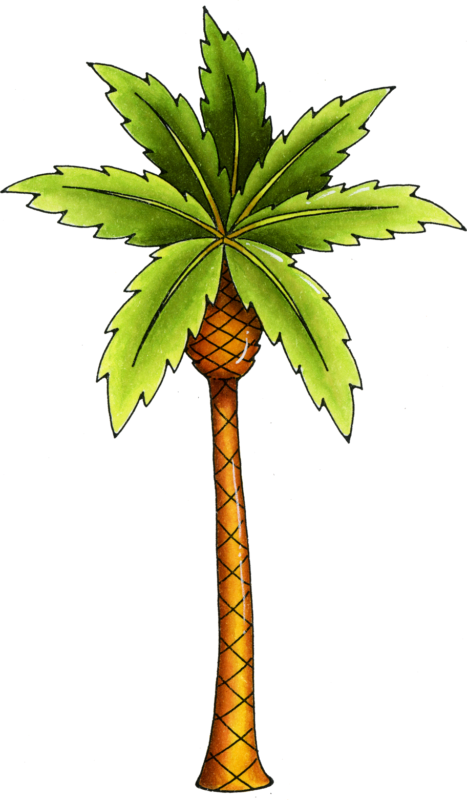 Photo navidad pinterest clip. Palm clipart palm florida trees