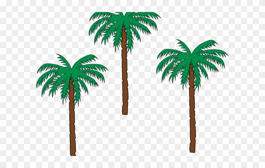 Palm clipart pom tree. Date haiti coat of