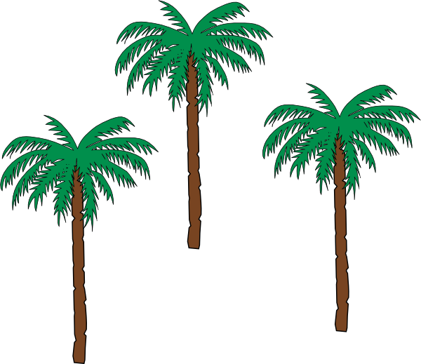 Trees clip art at. Palm clipart pom tree