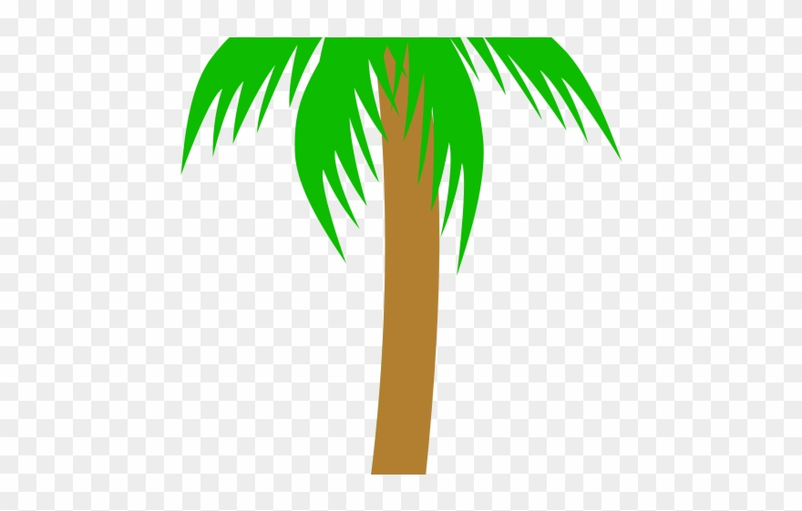 Png download . Palm clipart pom tree