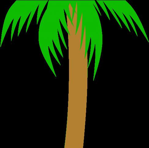 Palm clipart pom tree. Transparent