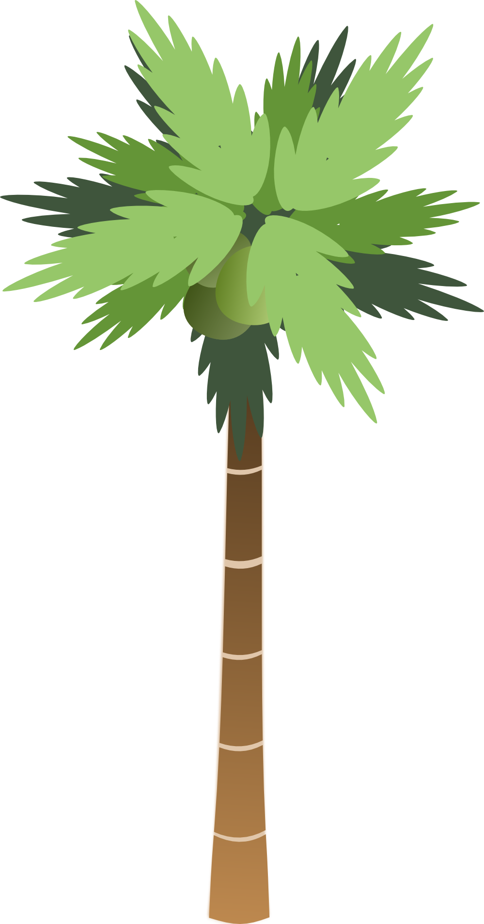Palm clipart simple. Cartoon tree png image