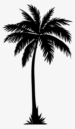 Palm clipart single. Tree silhouette png images