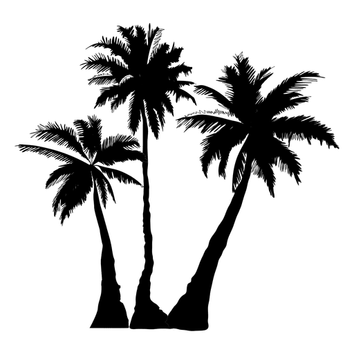Palm tree vector png. Silhouette trees at getdrawings