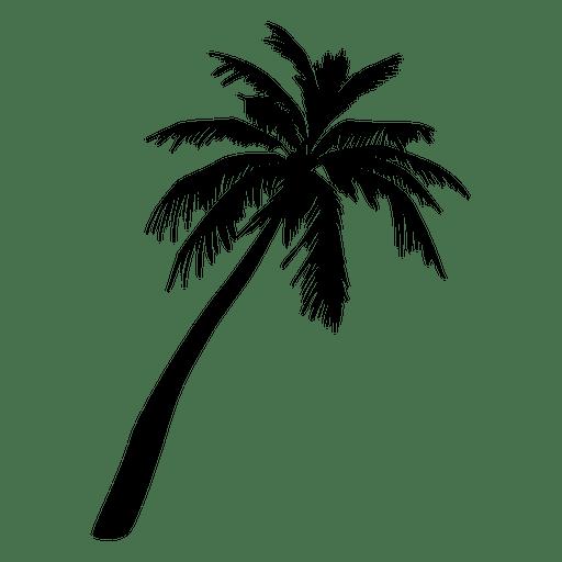 Illustration transparent svg. Palm tree vector png