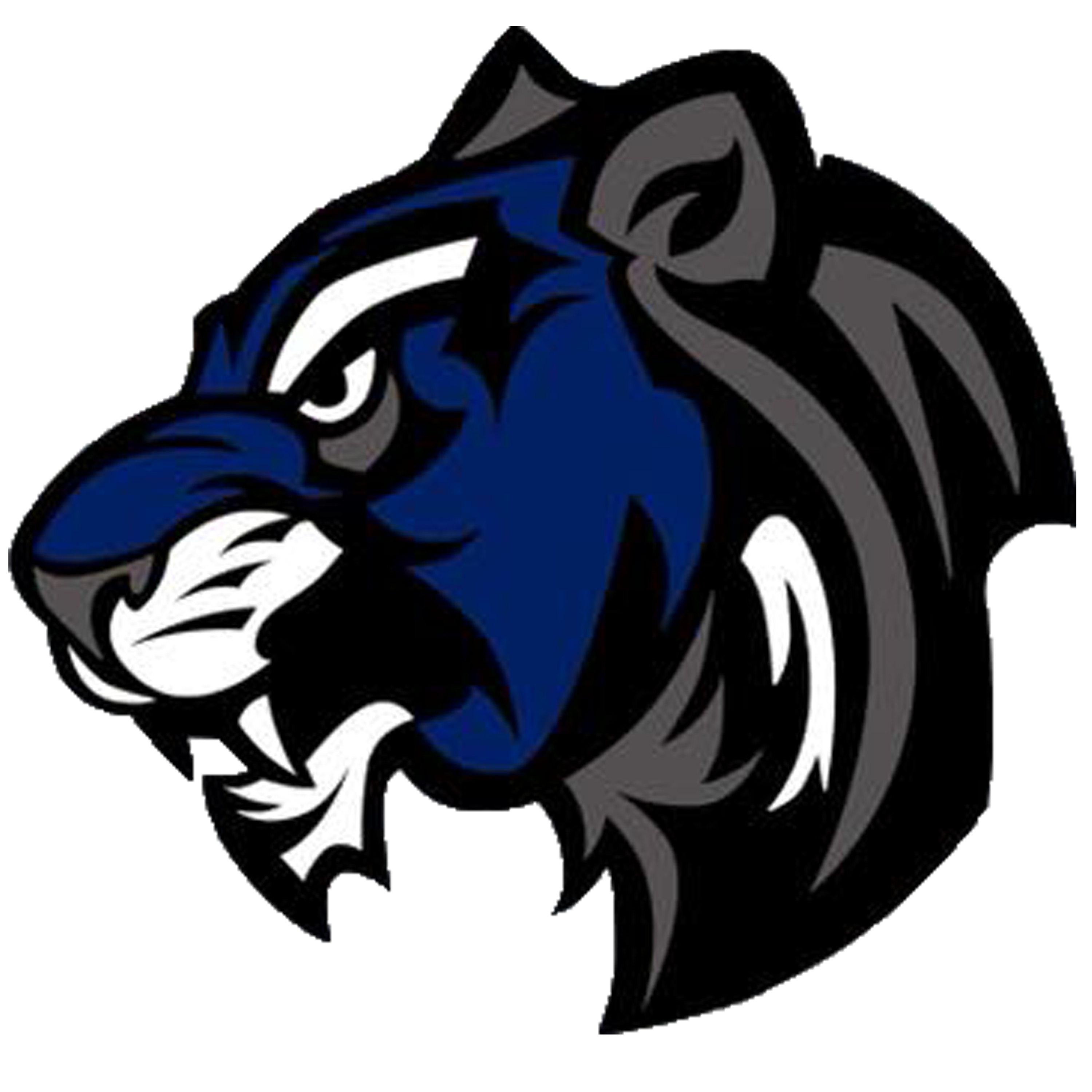 Panther clipart medina valley. Gefa weekly predictions mt