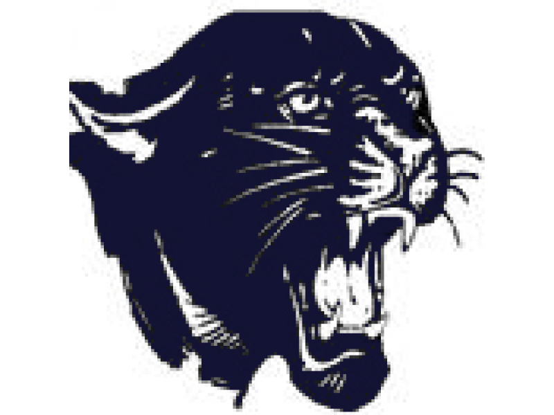 Description locations the nd. Panther clipart medina valley