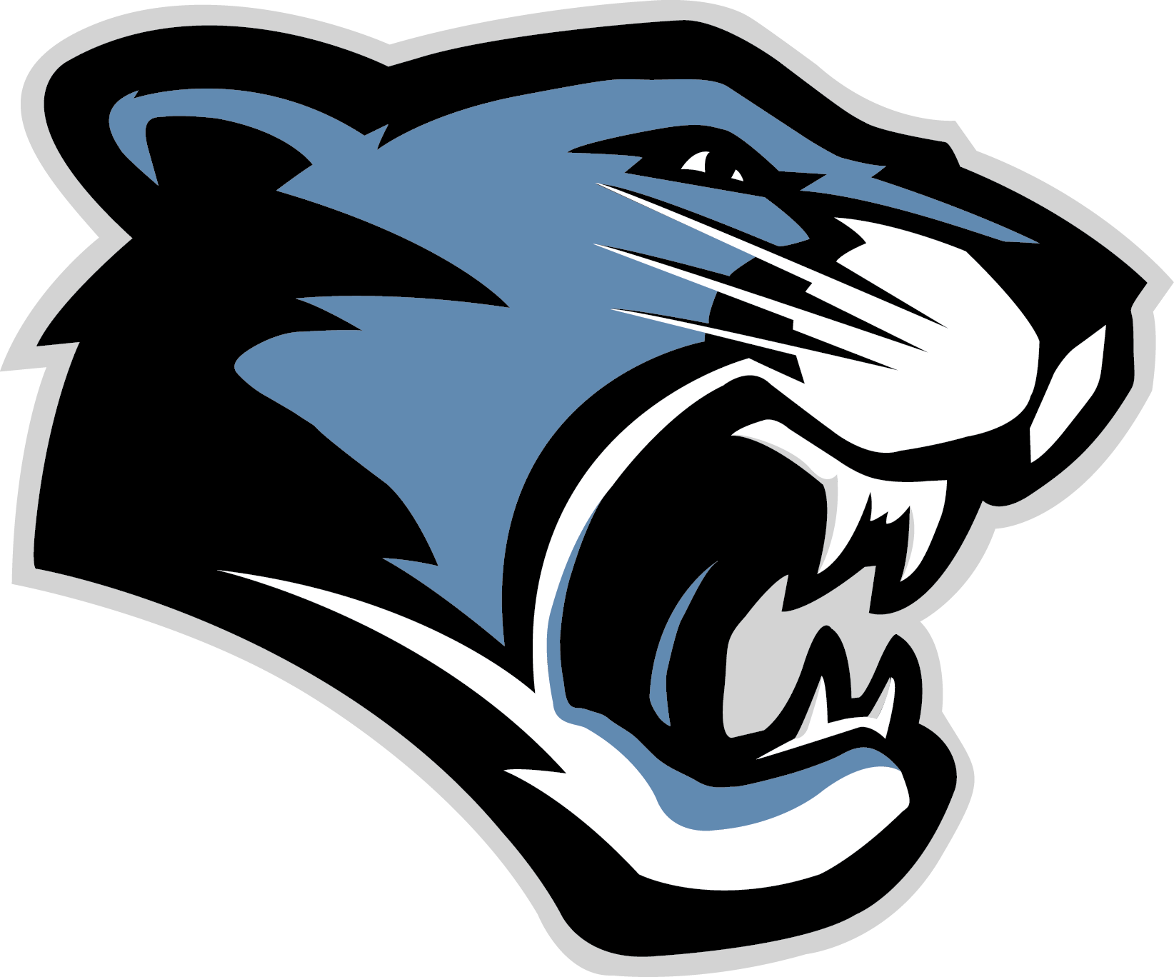 Panther clipart nfl. The best logos in