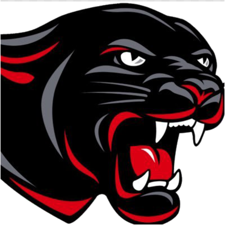 The tracy milroy balaton. Panther clipart panther basketball