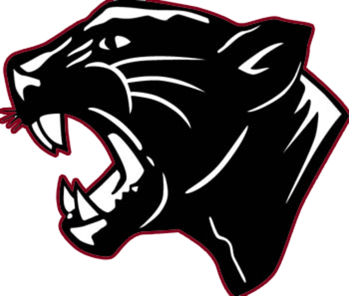 The mccomb panthers scorestream. Wildcat clipart superior
