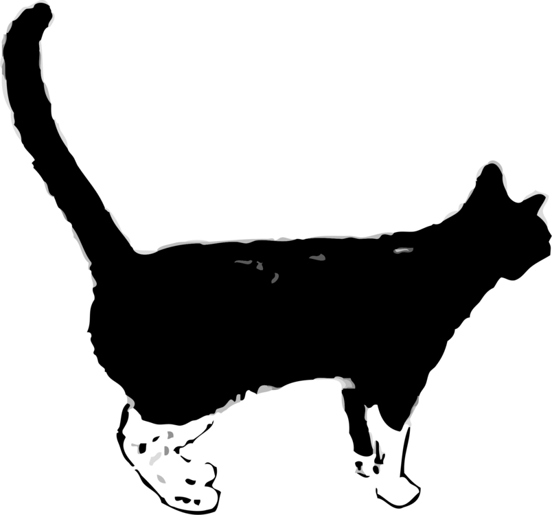 Panther clipart track. Black cat kitten felidae