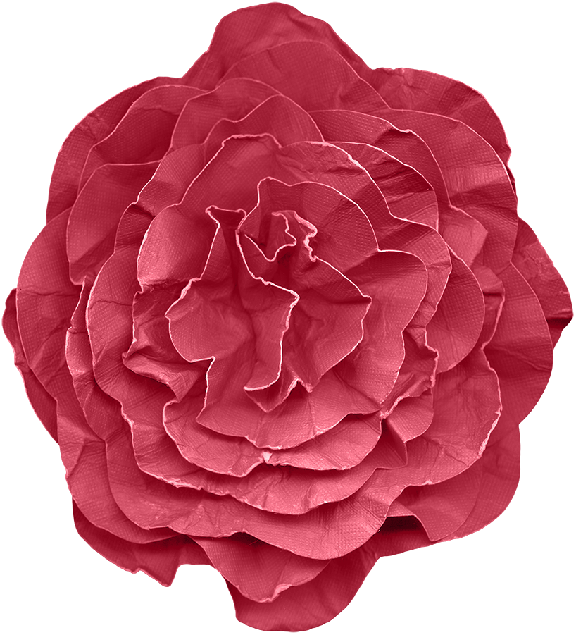 Paper flower png. Flowers transprent free download