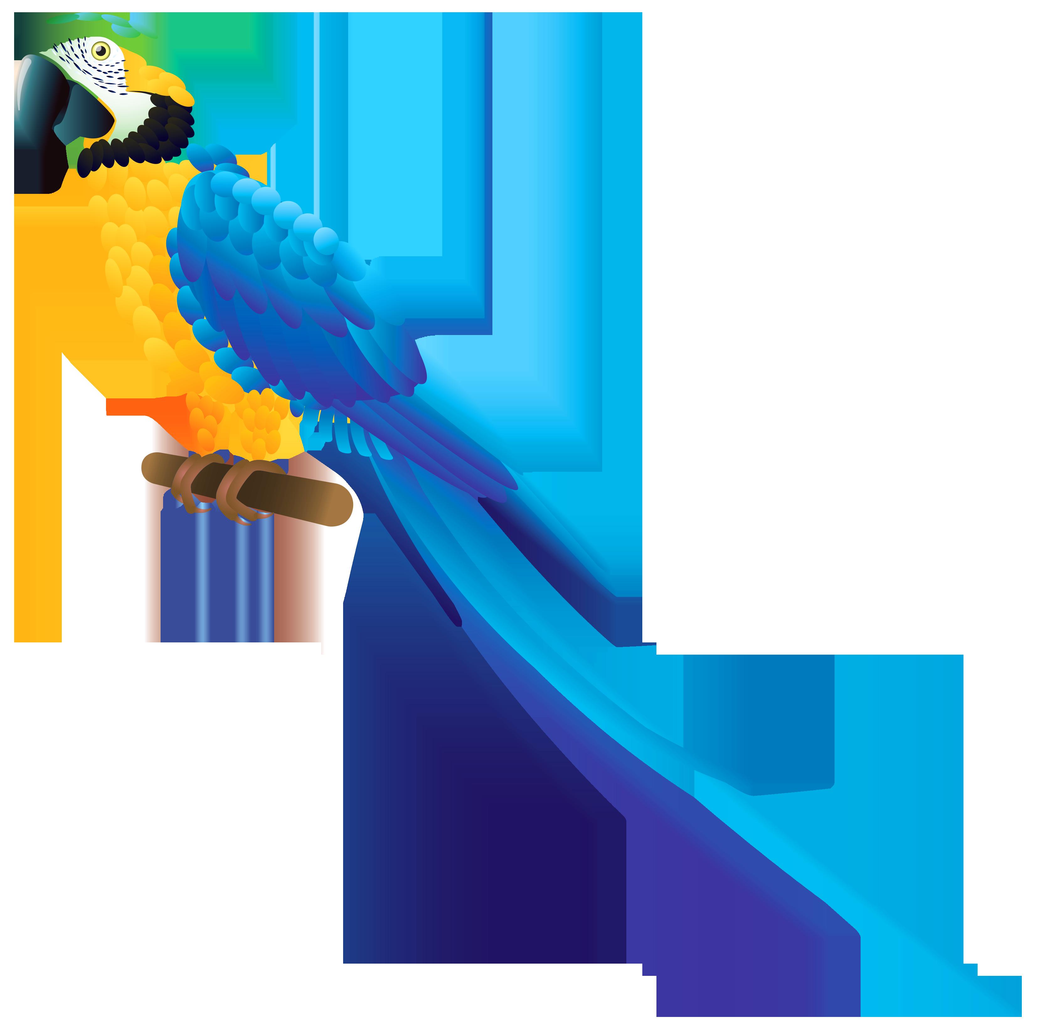 Parrot clipart. Blue png best web