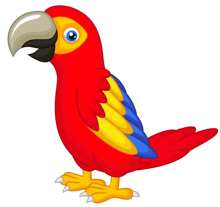 Parrot clipart. Station