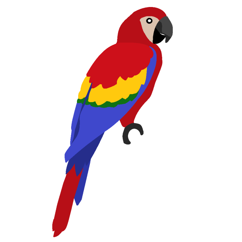 Pencil and in color. Parrot clipart