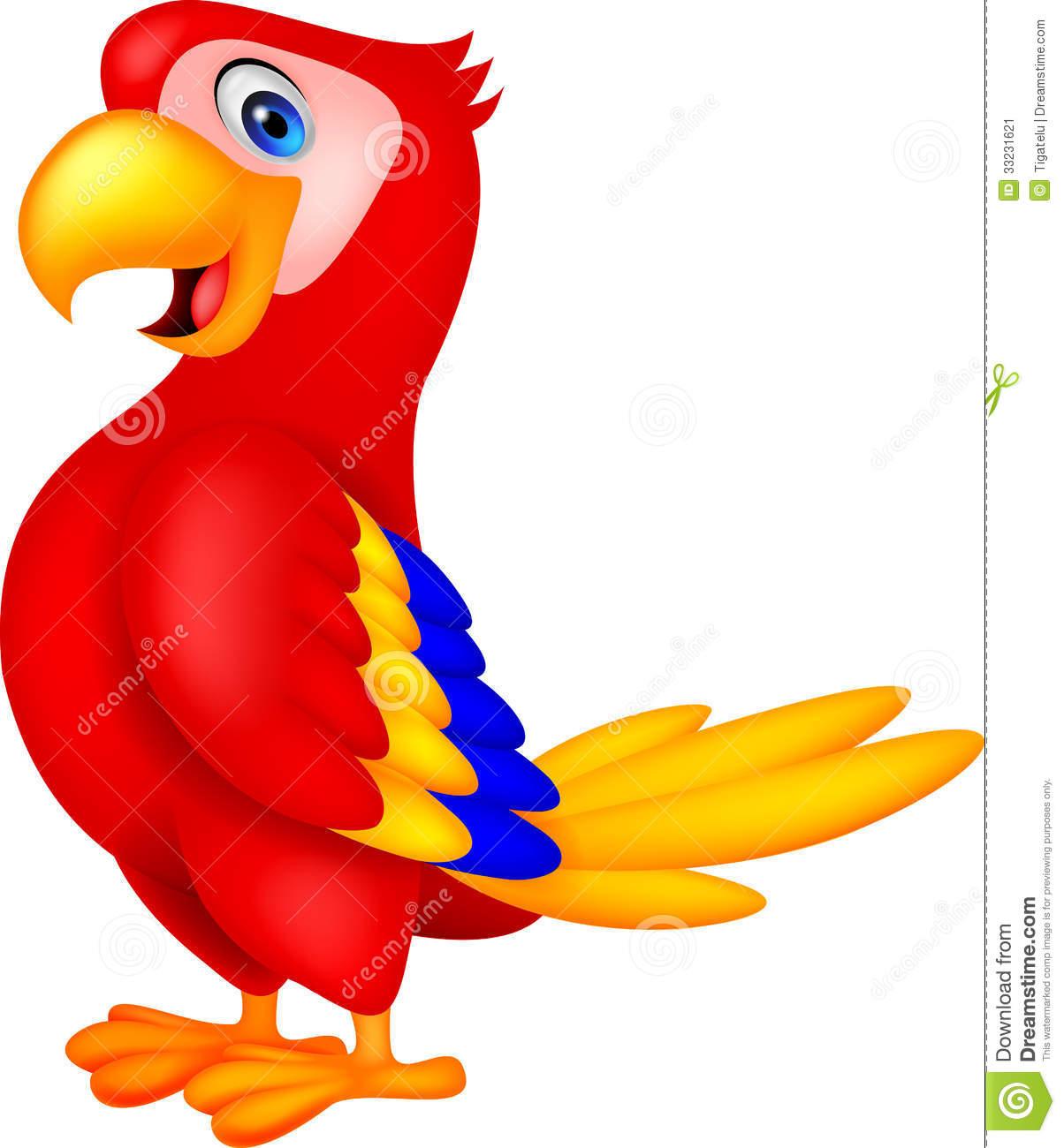 Parrot clipart beautiful parrot.  clipartlook