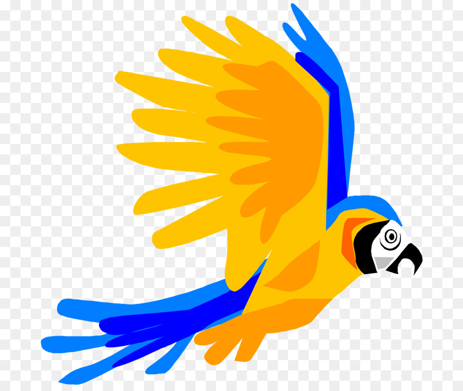 Parrot clipart bird fly. Line drawing png download