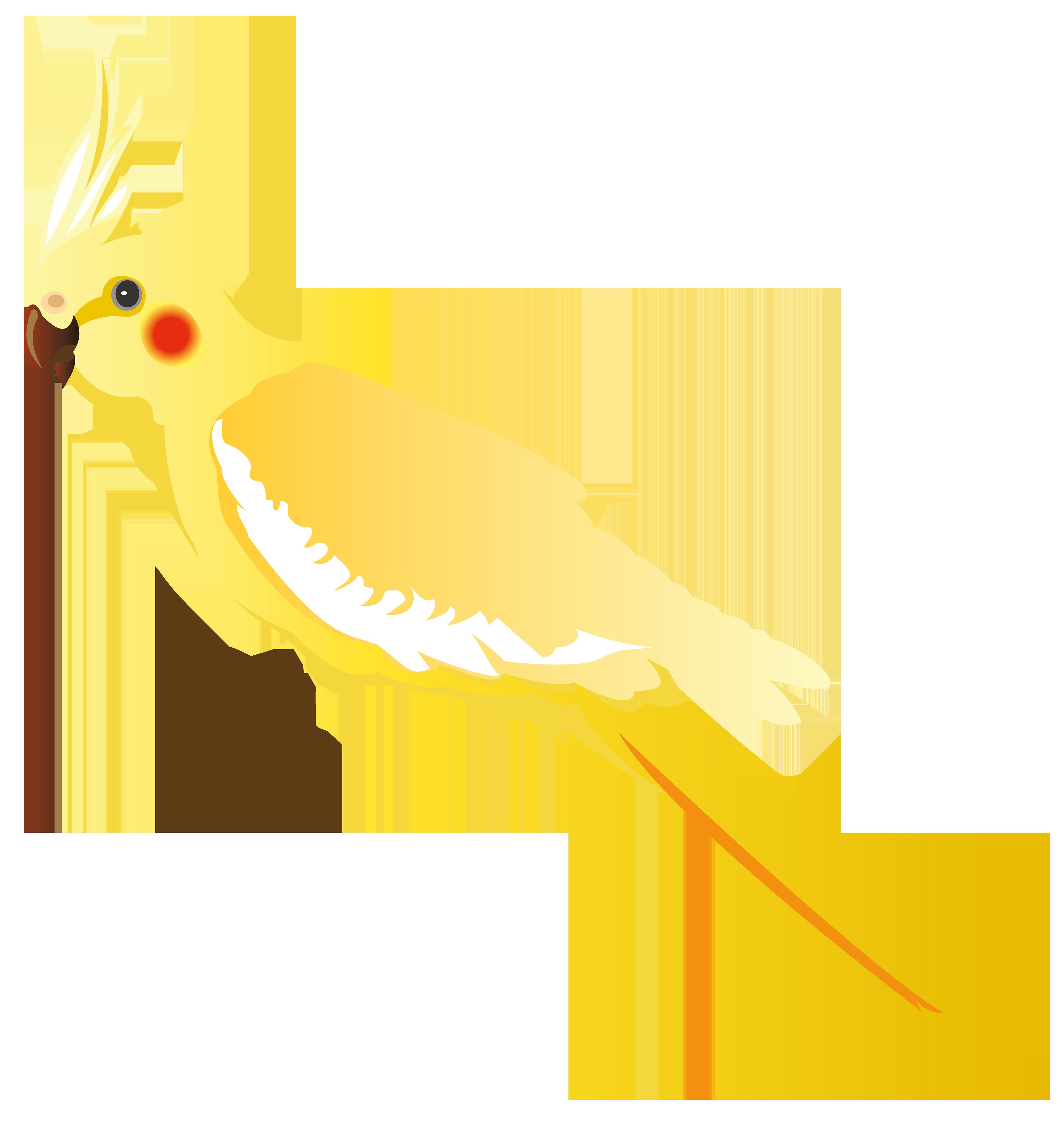 Png best web. Pet clipart yellow parrot