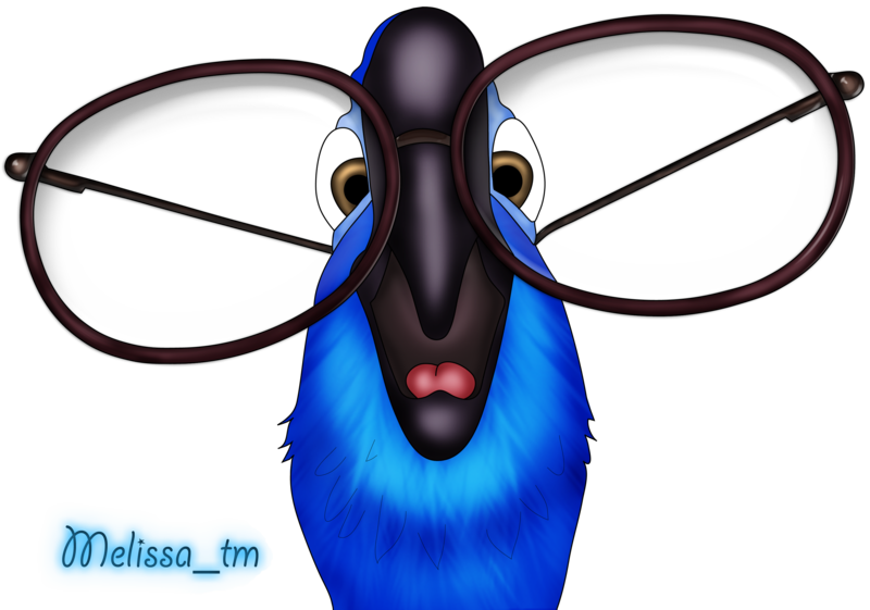 Parrot clipart blue parrot. From rio png by