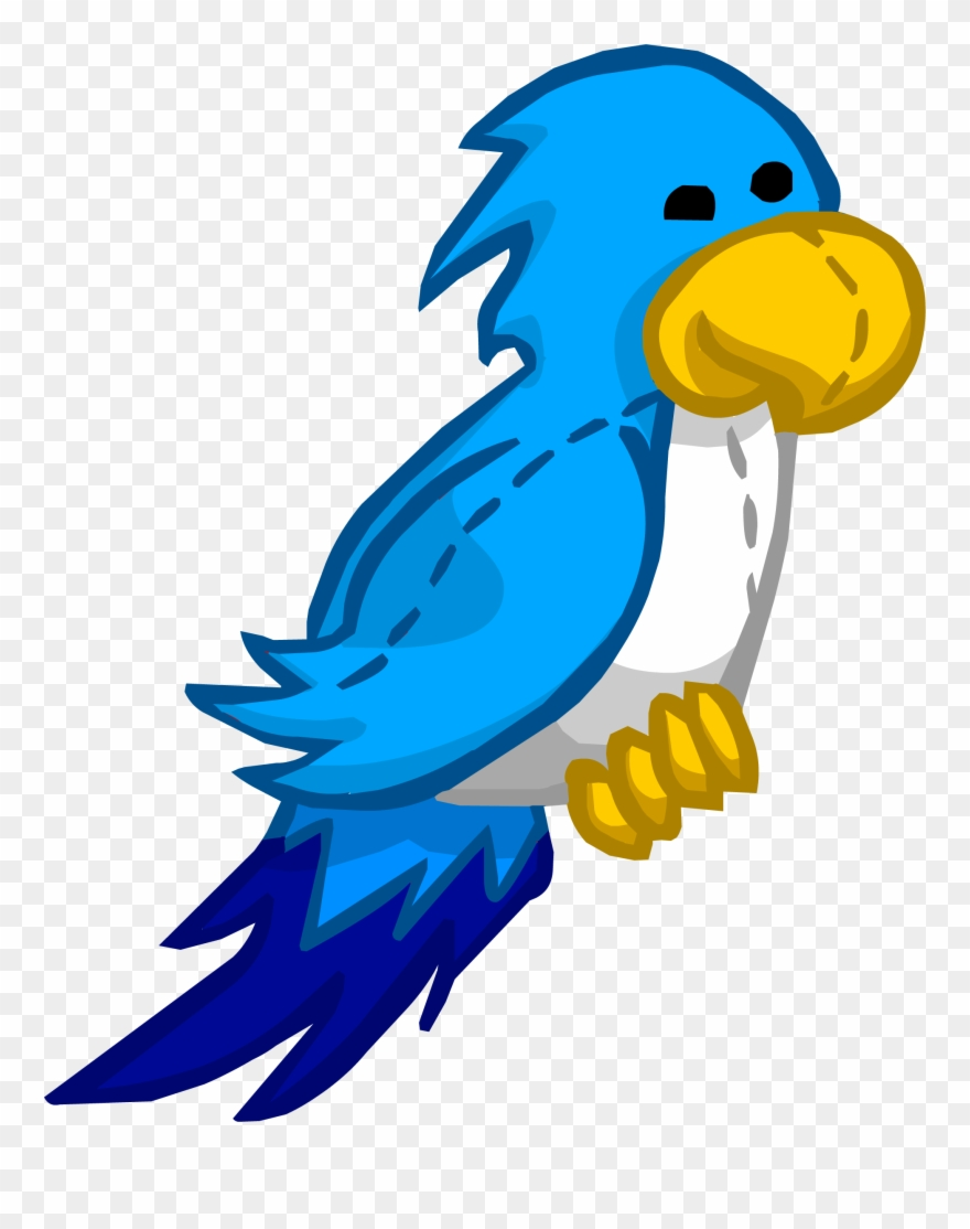 Parrot clipart blue parrot. Captain rockhopper club penguin