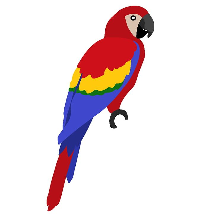 Scarlet and png . Parrot clipart blue yellow macaw