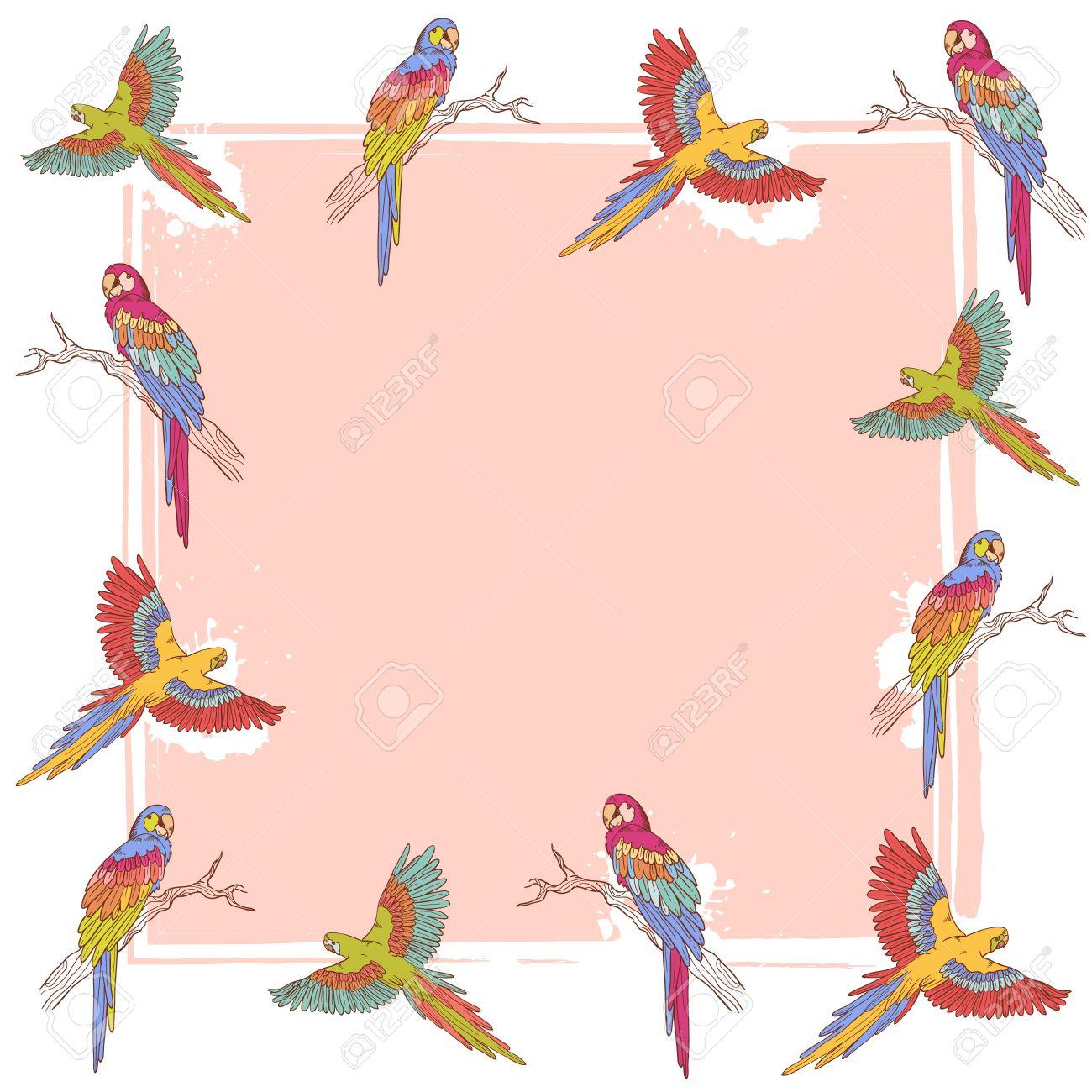 Parrot clipart border. X free clip art