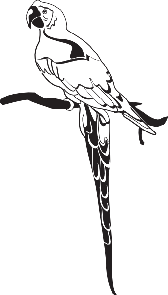 Parrot clipart branch clipart. On clip art at