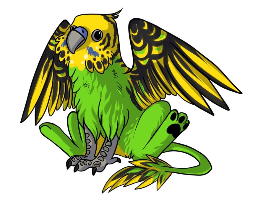 Griffin by dragondodo on. Parrot clipart budgie
