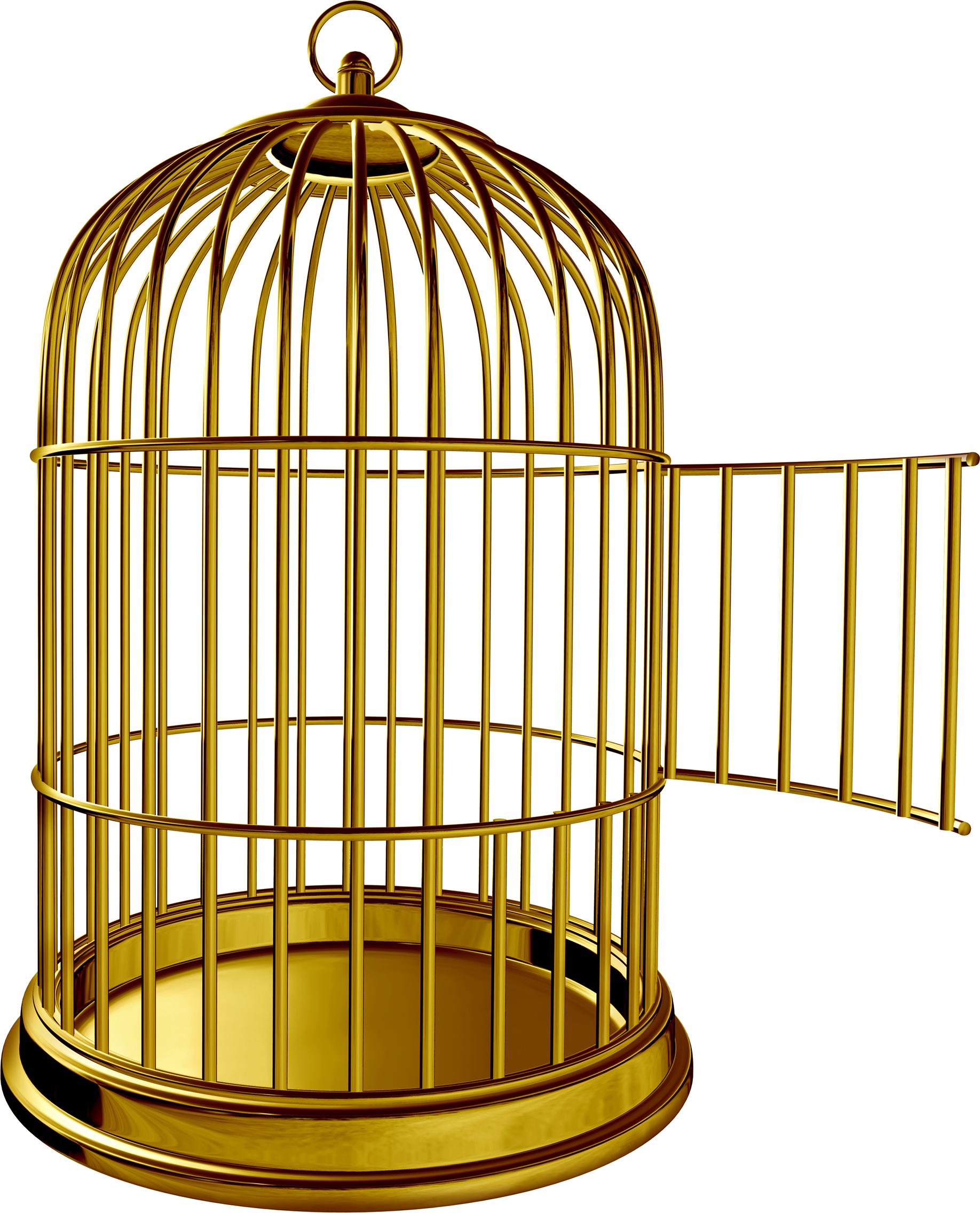 Birdcage parrot clip art. Cage clipart golden bird