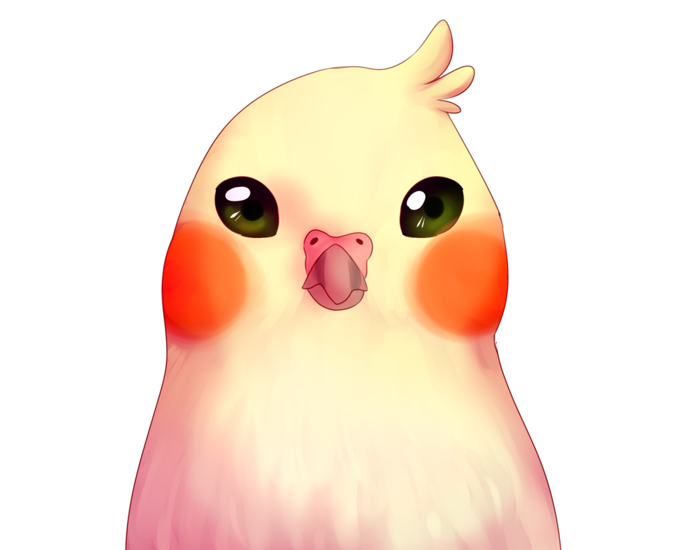 Parrot clipart chibi. Pichoo gone by cackateel